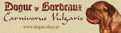 Carnivorus Vulgaris